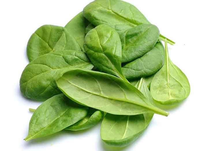 product Spinach22